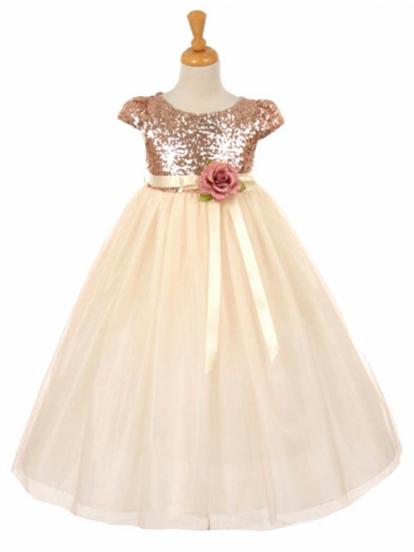 Zolindu Ines Blush Pink Short Sleeve Sequins & Tulle Dress